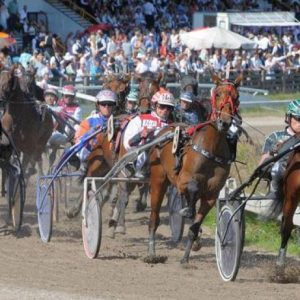 Paardenraces Duindigt